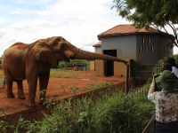04_brazil-belhina-babu-and-chocolate-brasilia-zoo-030