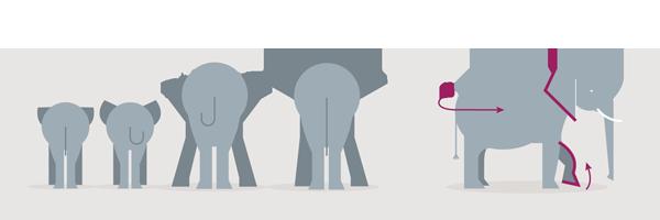 ilustração elefantes - comunicação