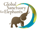 banner Global Sanctuary for Elephants