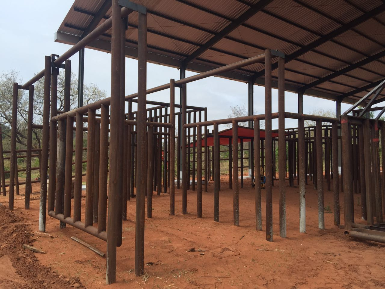 Sema licencia Santuário de Elefantes - foto3