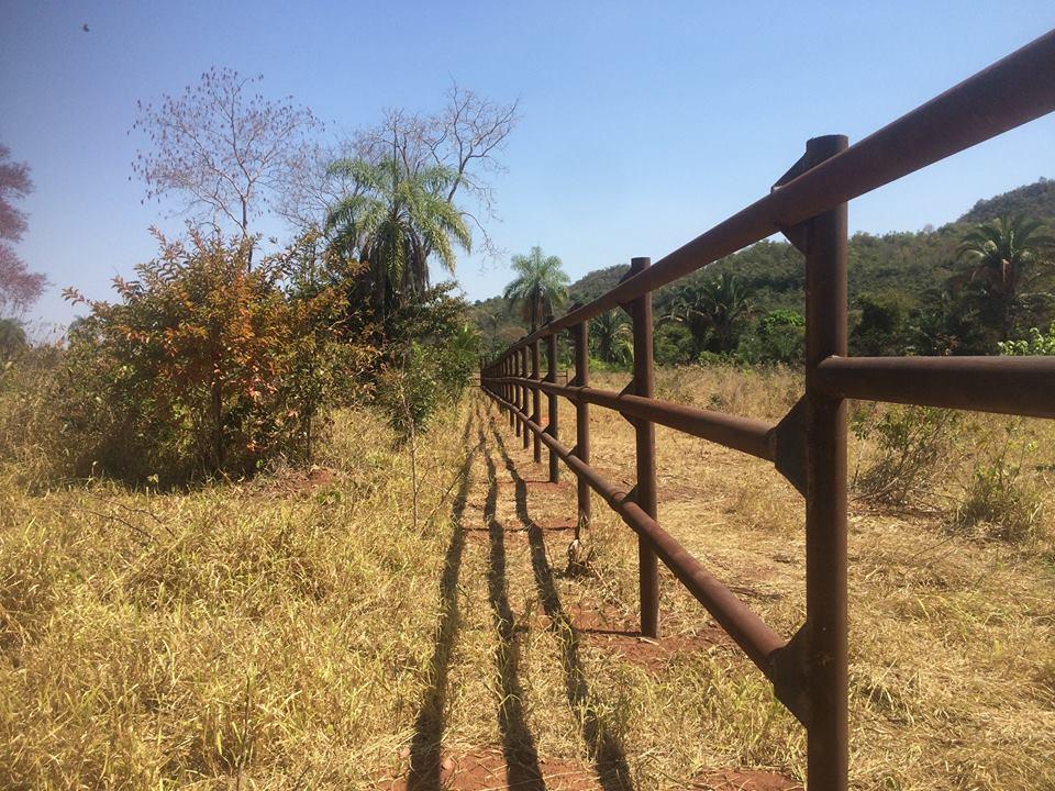 Sema licencia Santuário de Elefantes - foto4