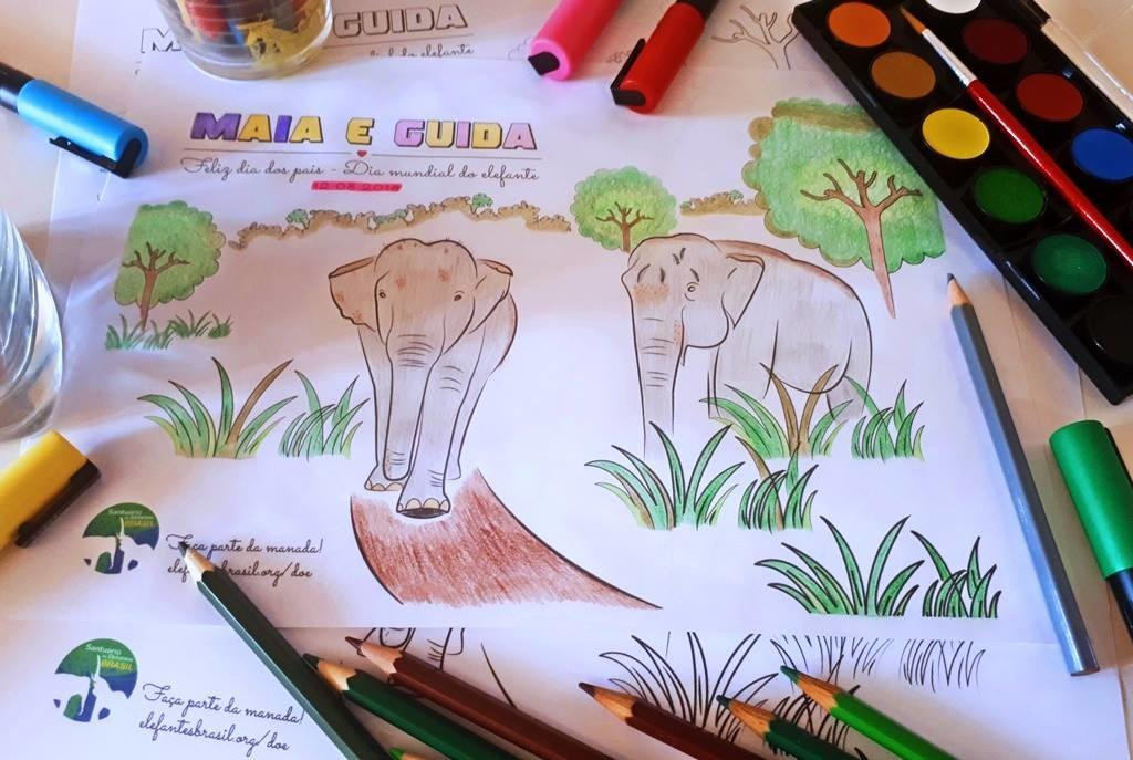 Maia e Guida PARA COLORIR marcam Dia Mundial do Elefante em 2018. Data é celebrada em 12 de agosto