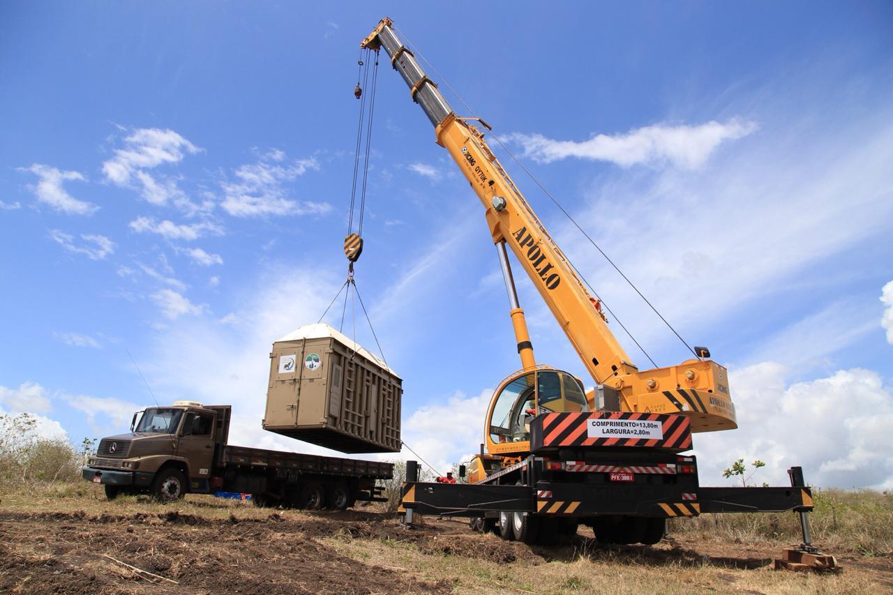 Santuário de Elefantes faz 4 dias de adaptação de Rana ao conteiner de transporte antes do embarque